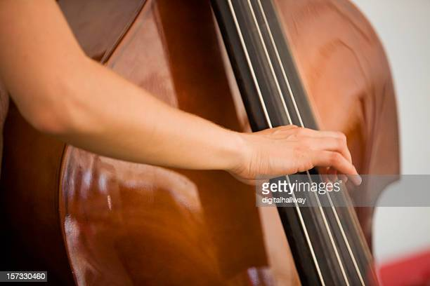 Upright String Bass