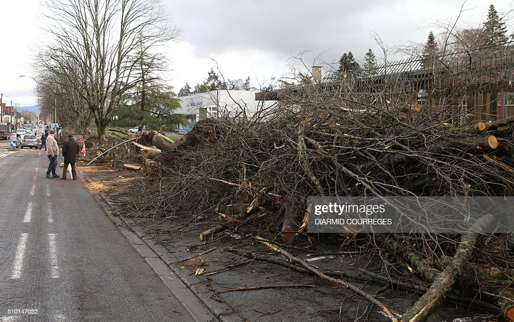 Uprooted trees are being cut down in Brive-la-Gaillarde, southwestern France, on February 14, 2016 after falling overnight as a small tornado hit the town. About 15,000 homes were still without power Fabruary 14, including 3,000 in the Landes department and 3,000 in the Pyrenees-Atlantiques, after a storm raged through the southwest overnight. / AFP / DIARMID COURREGES