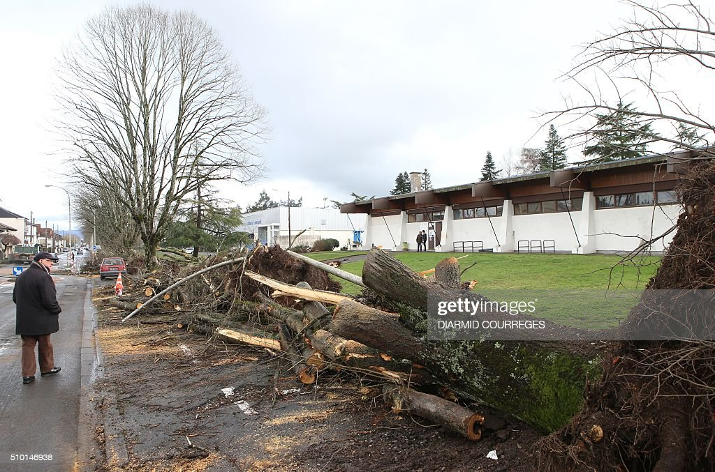 Uprooted trees are pictured in downtown Brive-la-Gaillarde, southwestern France, on February 14, 2016 after falling overnight as a small tornado hit the town. About 15,000 homes were still without power Fabruary 14, including 3,000 in the Landes department and 3,000 in the Pyrenees-Atlantiques, after a storm raged through the southwest overnight. / AFP / DIARMID COURREGES