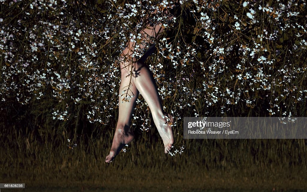 Upside Down Image Of Woman Feet Up While Lying In Flowering Field