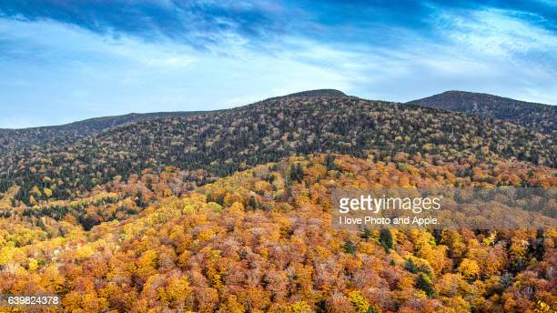 Ura-bandai autumn color