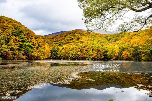 Ura-Bandai scenery
