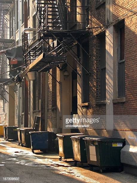 Urban Alley Dumpsters and Steel Fire Escape