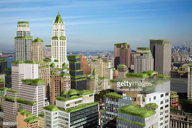 Urban buildings with green roofs