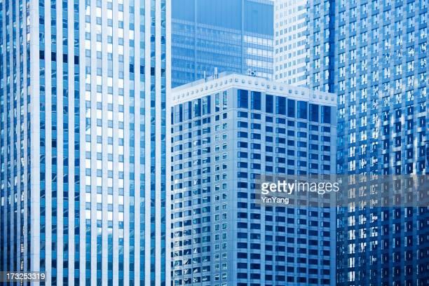 Urban Chicago Skyscaper Landscape Hz