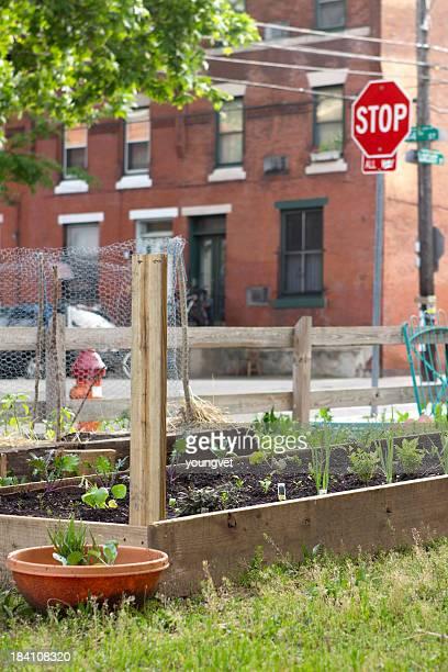 Urbane community garden