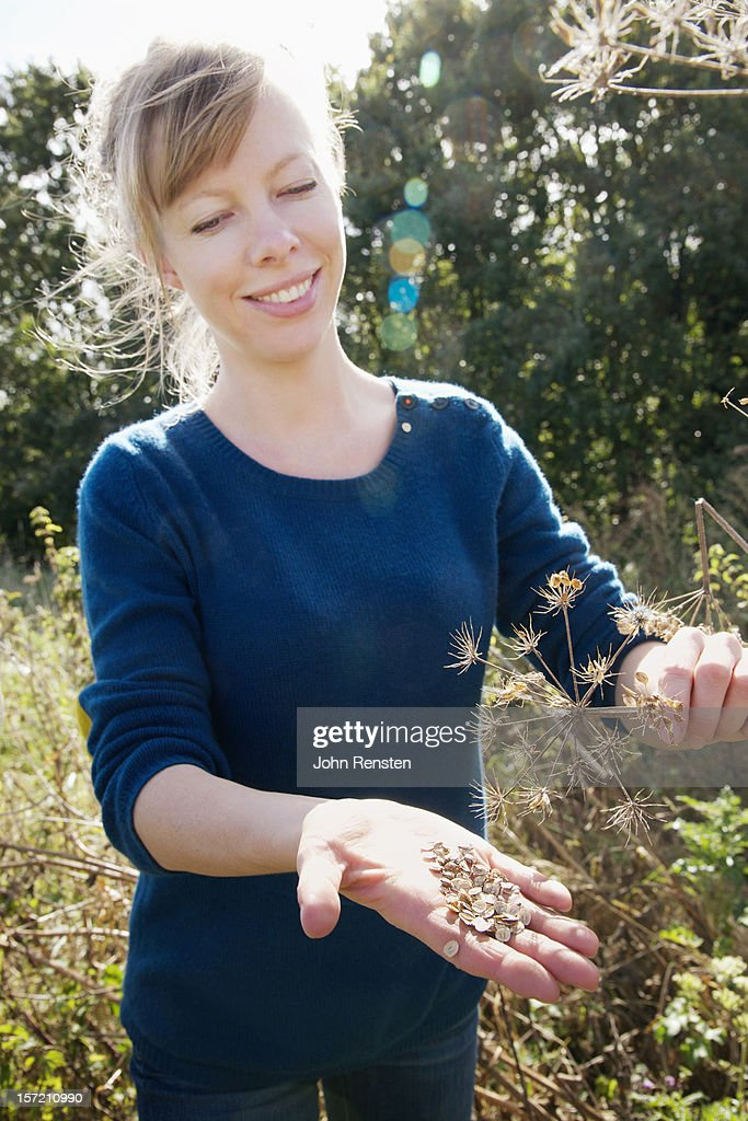 urban foraging for wild food berries and mushroom : Stock Photo