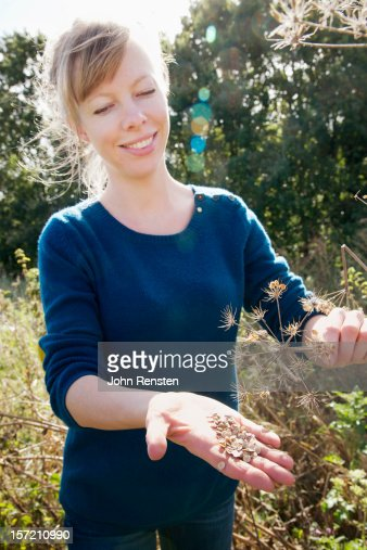 urban foraging for wild food berries and mushroom : Photo