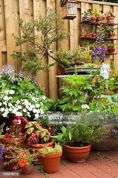 都会的な庭園シリーズ