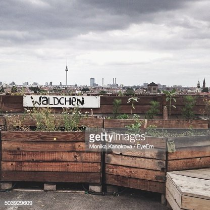 Urban gardening with city against clouds in background