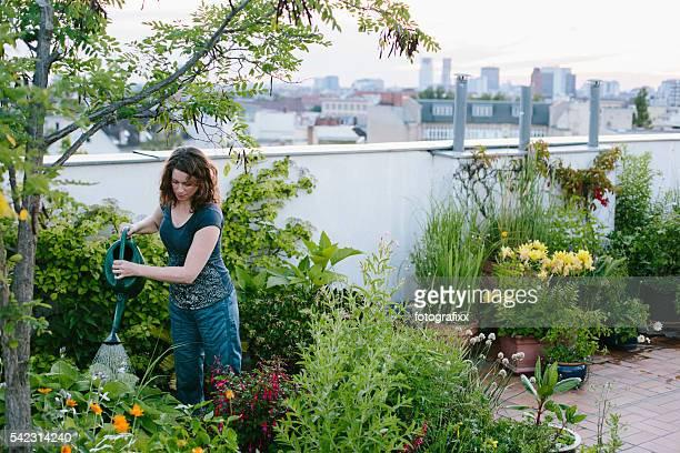Giardinaggio urbano: Donna si diffonde piante su giardino sul tetto