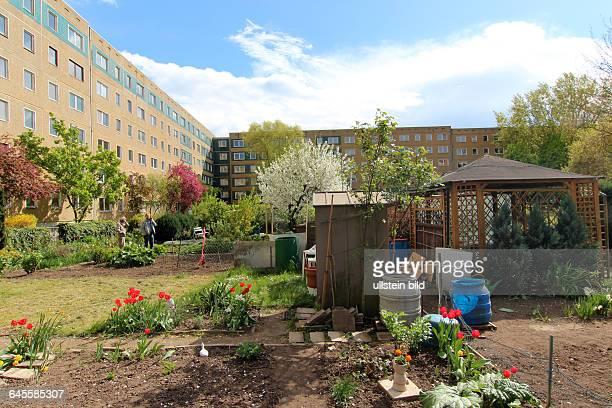 Urbane Gartenanlage zwischen Wohnblöcken in HalleNeustadt Die von den Bewohnern auf eigene Initiative zunächst illegal angelegten Gemüsegärten auf...