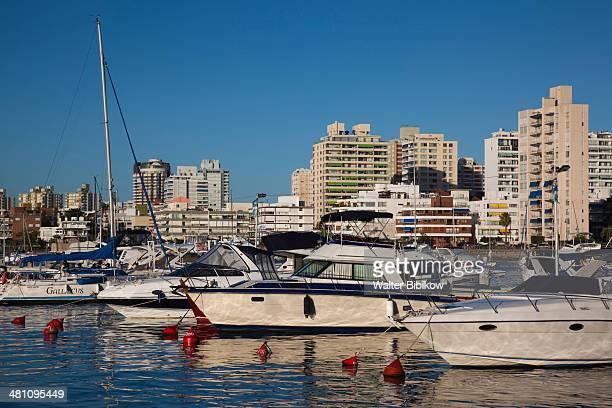 Uruguay, Punta del Este, yacht harbor, sunset