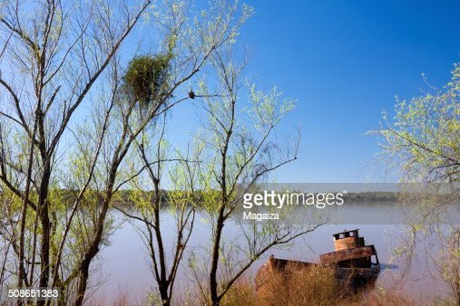 Uruguay River in South America : Stock Photo