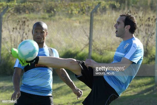 Uruguayan footballers Diego Godin and Carlos Sanchez take part in a training session ahead of their FIFA World Cup South American qualifier football...