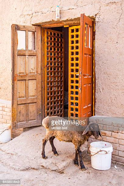 UZB Usbekistan Uzbekistan Chiwa Chiva Xiwa Choresm Museumsstadt Maerchenstadt Stadtfestung Architektur Bauwerk Gebaude historisch Kultur Sakralbau...