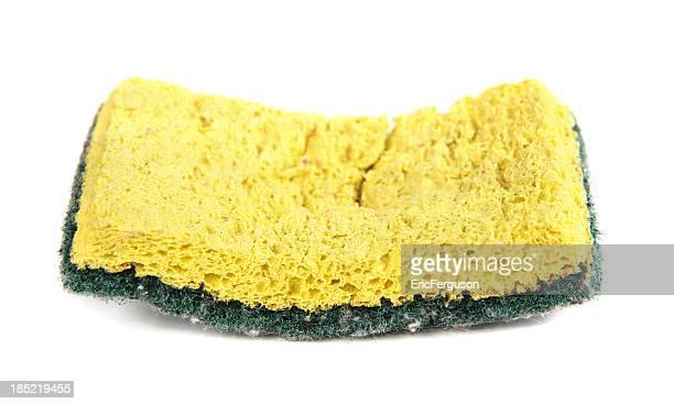Used sponge isolated on white