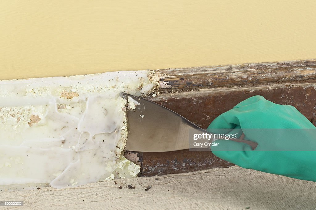 using a scraper to remove paint from skirting board covered with paste stripping solution stock. Black Bedroom Furniture Sets. Home Design Ideas