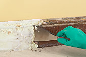 Using a scraper to remove paint from skirting board covered with paste stripping solution
