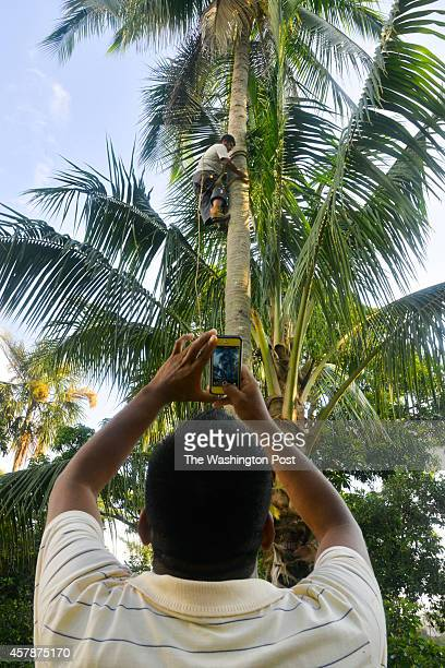 Using an iPhone one of his only possessions Javier Flores snaps photos of his brotherinlaw Germán Jimenez climbing a tree for coconuts in his home...