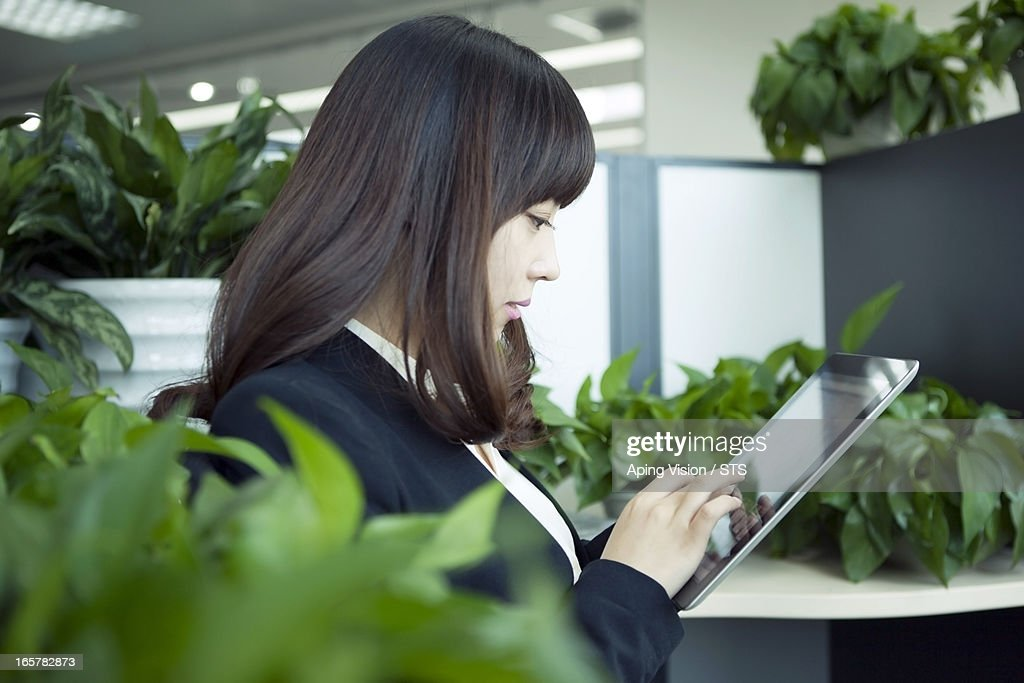 using digital tablet in green office : Stock Photo