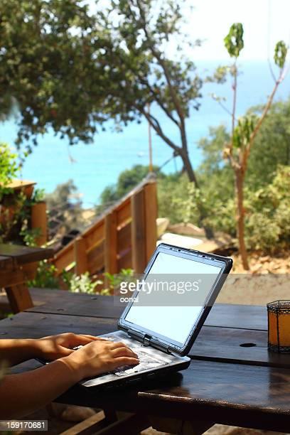 Usando una computadora portátil en la naturaleza