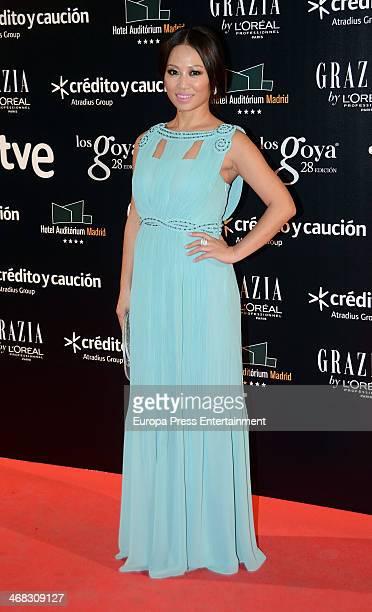 Usun Yoon attends Goya Cinema Awards 2014 after party at Centro de Congresos Principe Felipe on February 9 2014 in Madrid Spain