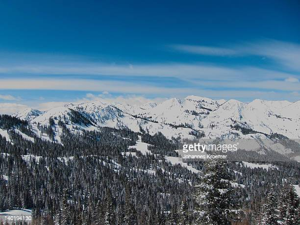 USA, Utah, Big Cottonwood Canyon, Winter landscape