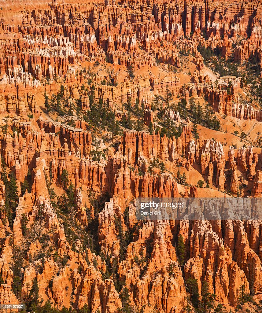 USA, Utah, Bryce Canyon, Landscape with cliff : Stock Photo