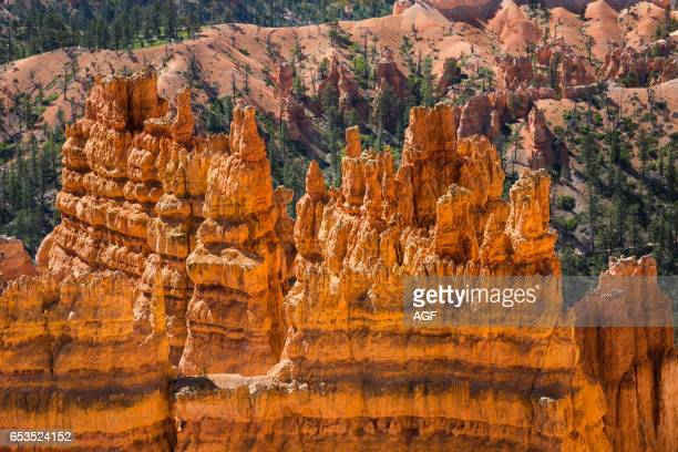 USA Utah Bryce Canyon National Park The major feature of the park is Bryce Canyon which despite its name is not a canyon but a collection of giant...