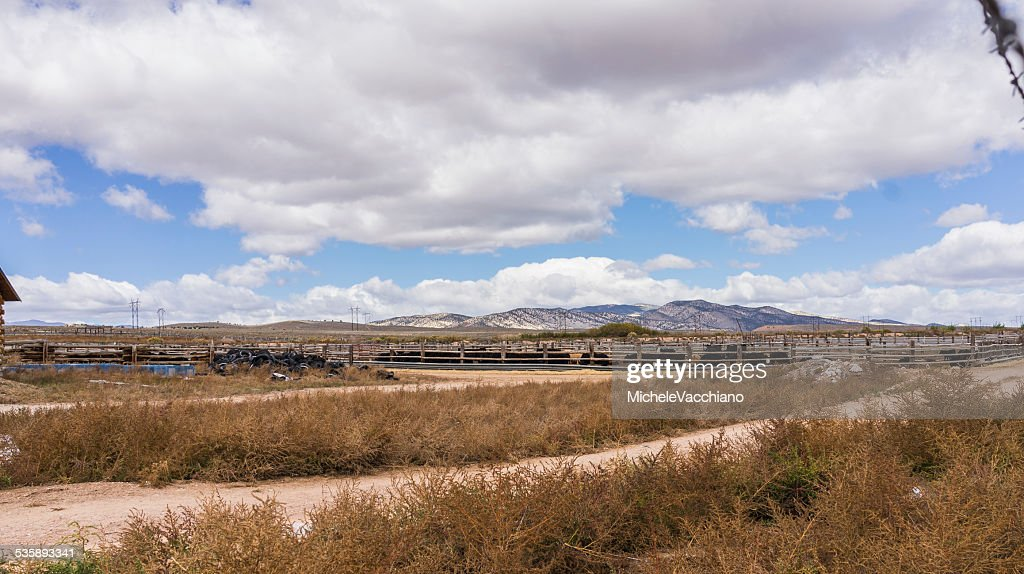 Utah. Cattle ranch near Salina along US Highway 50. : Stockfoto