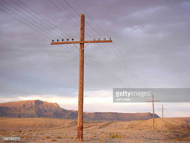 USA, Utah, Desert landscape with power lines