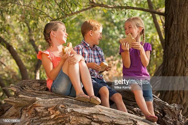 USA, Utah, Lehi, Three kids (4-5, 6-7) eating peanut butter sandwiches together on tree
