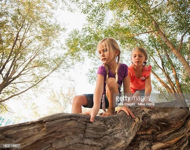 USA, Utah, Lehi, Two little girls (4-5, 6-7) climbing on horizontal tree branch