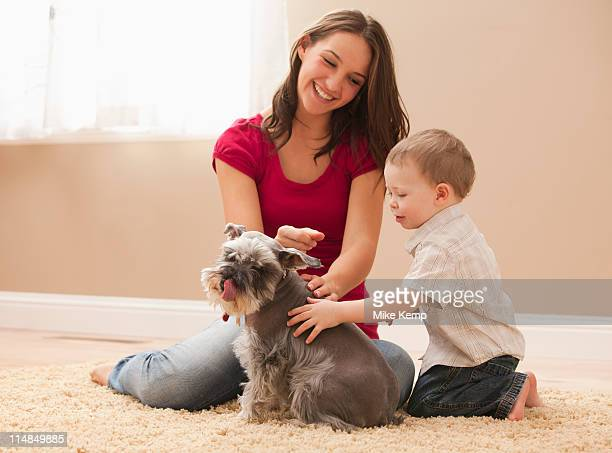 USA, Utah, Lehi, Young woman with brother (2-3) playing with schnauzer