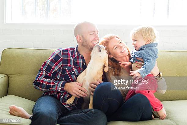 USA, Utah, Salt Lake City, Family with son (2-3) and pug on sofa