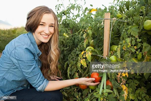 USA, Utah, Salt Lake City, Portrait of young woman harvesting tomatoes