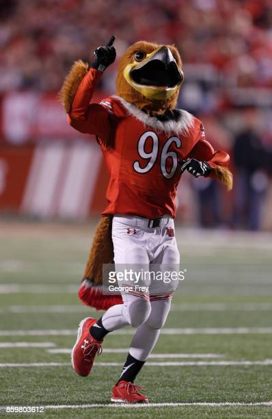 Utah Utes mascot 'Swoop' runs onto the field during the first half of an college football game against the Stanford Cardinal on October 7 2017 at...