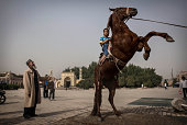 Uyghur boy sits atop a horse as he has his picture taken outside the Id Kah Mosque before the Eid holiday on July 28 2014 in old Kashgar Xinjiang...