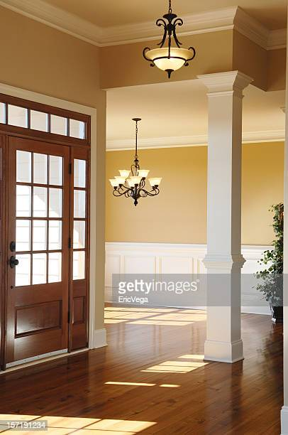 Vacant foyer with a ceiling light and wooden floor and door