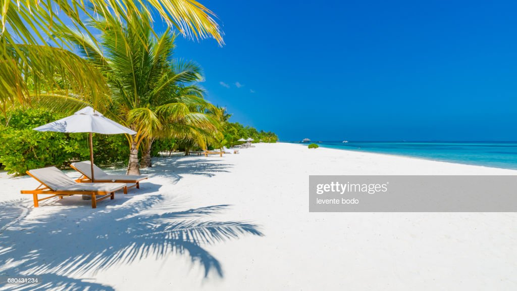 vacation holidays background wallpaper two beach lounge chairs under tent on beach with palm trees - Beach Lounge Chairs