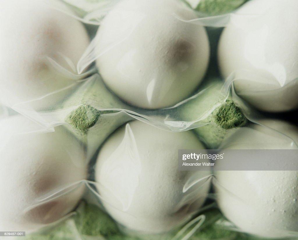 Vacuum packed eggs in box, full frame : Stock Photo