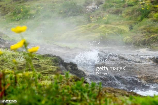 Vadmalahver hot spring in Fludir Iceland