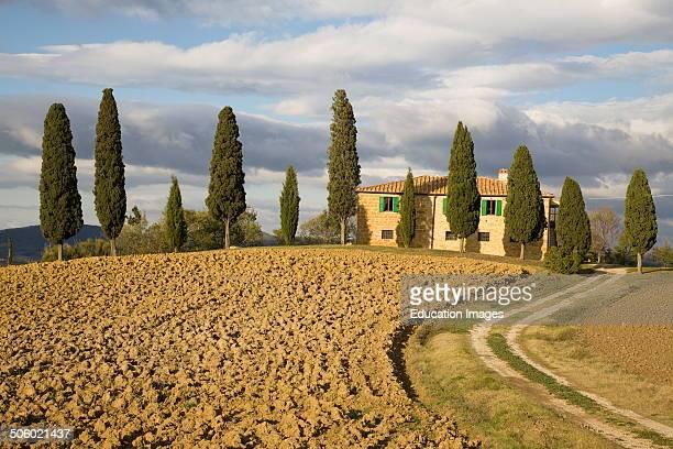 Val D'orcia Pienza Area Tuscany Italy