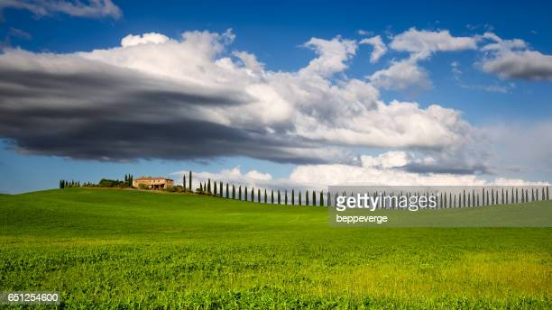 Val d'Orcia - Podere