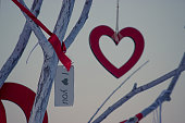 valentine day, heart and valentine card hang on a tree