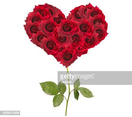 Dia para namorados coração feito de rosas vermelho isolado : Foto de stock
