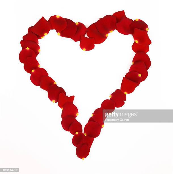 Valentine's Day heart of rose petals with love