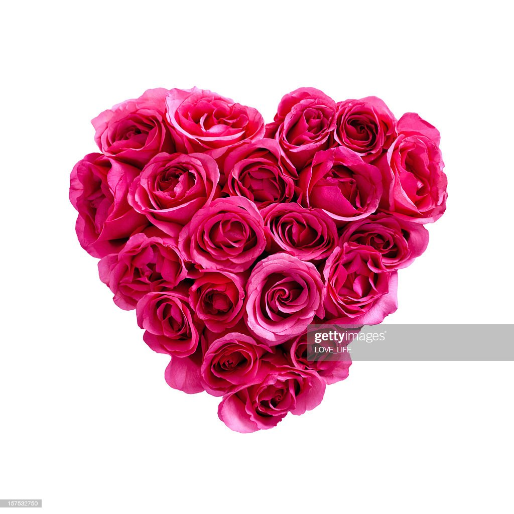 Valentines Day Roses : Stock Photo
