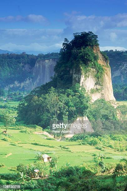 Valley and rainforest, West Sumatra, Indonesia